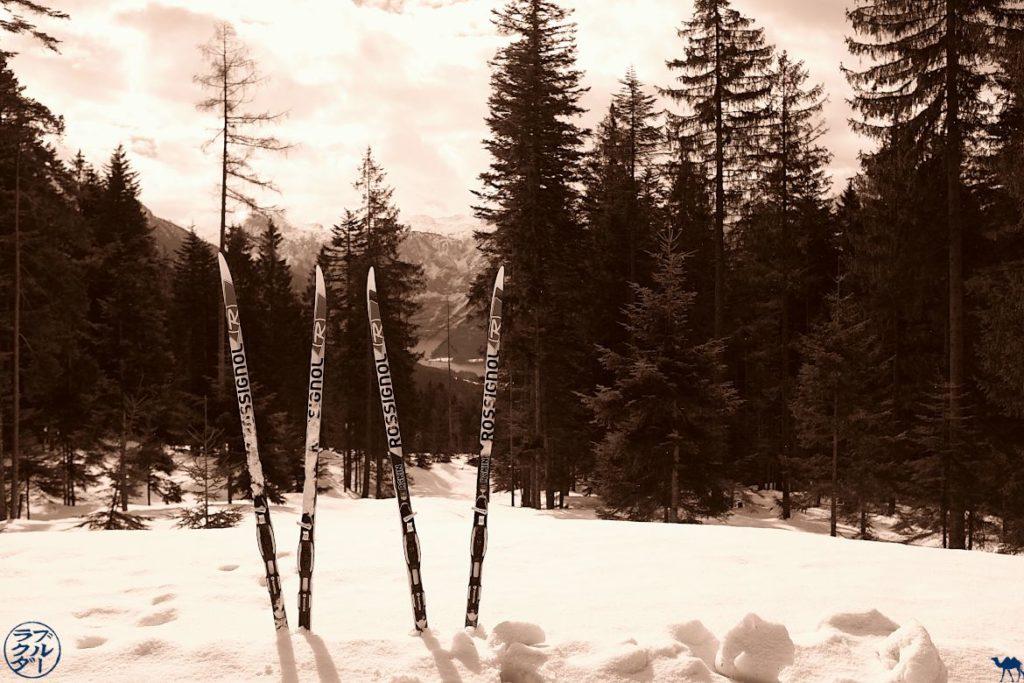Le Chameau Bleu - Blog Voyage Autriche - Ski de fond dans le Salzkammergut