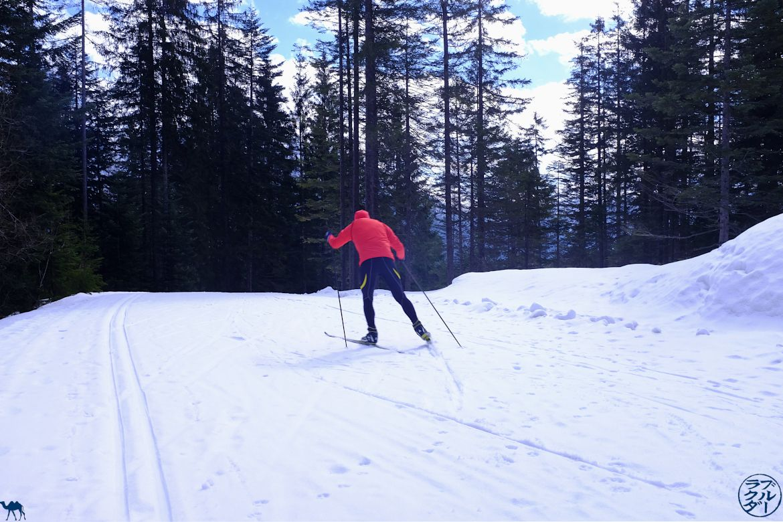 Le Chameau Bleu - Blog Voyage Autriche - Skieur de Fond à Bad Goisern -Salzkammergut