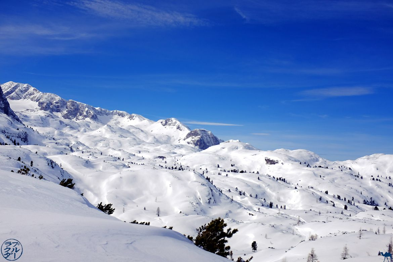 Le Chameau Bleu - Blog Voyage En Autriche - Relief du Dachstein Krippenstein