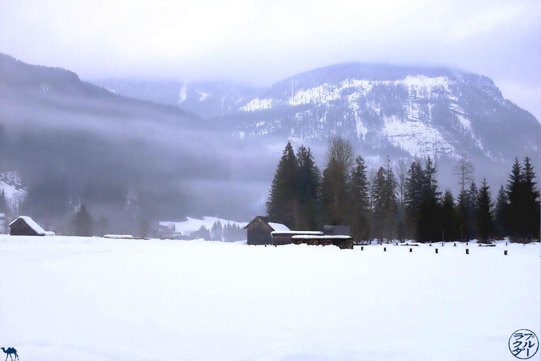 Le Chameau Bleu - Voyage En Autriche - Neiges de Gosau - Dachstein