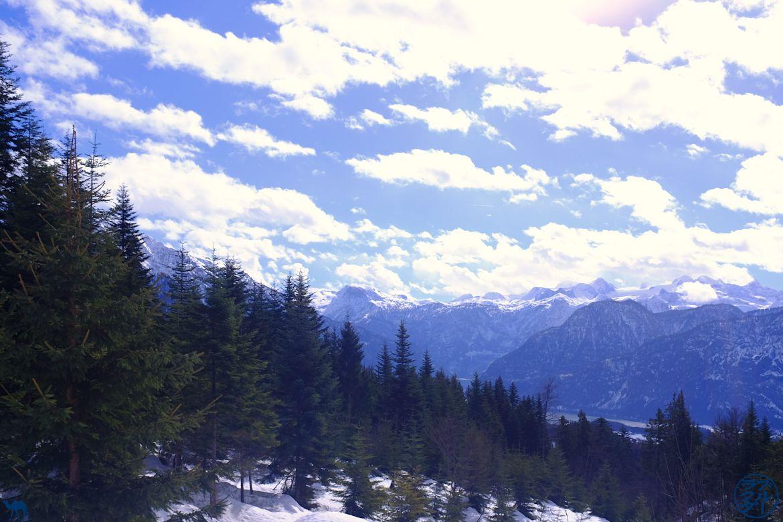 Le Chameau Bleu - Voyage en Autriche - Vue sur le Salzkammergut