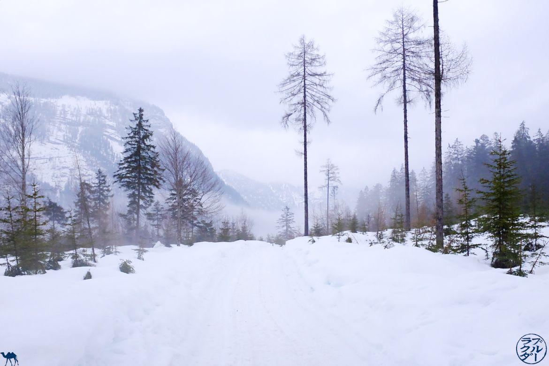 Le Chameau Bleu - Blog Voyage Autriche - Balade dans Gosau-Salzkammergut
