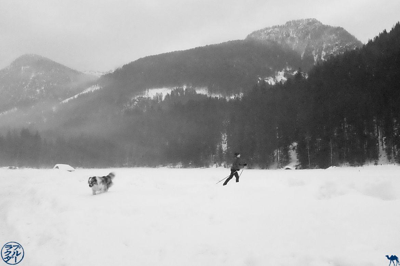 Le Chameau Bleu - Blog Voyage Autriche - Ski de fond à Gosau dans le Salzkammergut