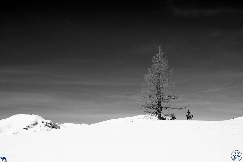 Le Chameau Bleu - Voyage en Autriche - Paysage Montagne dans le Dachstein