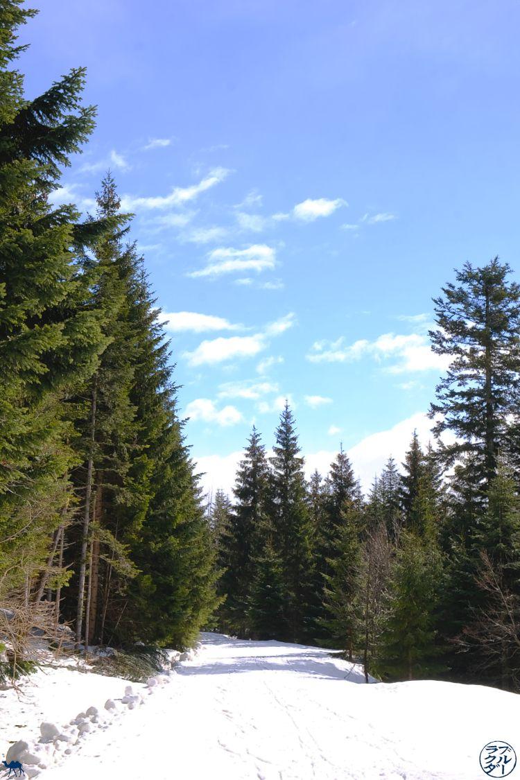 Le Chameau Bleu - Blog Voyage Autriche - Sentier Bad Goisern Salzkammergut