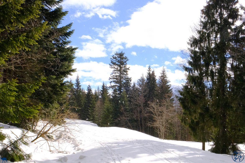 Le Chameau Bleu - Ski de Fond à Bad Goisern Autriche
