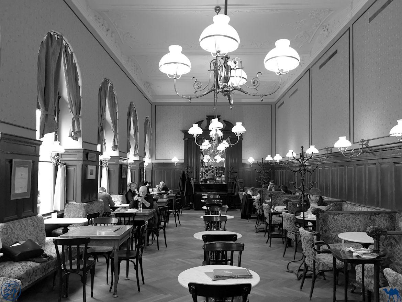 Le Chameau Bleu Blog Voyage Vienne - Salle Café Sperl