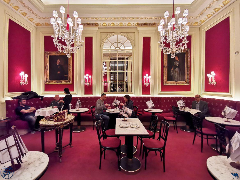 Le Chameau Bleu - Blog Voyage Vienne - Salle du Café Sacher - Autriche