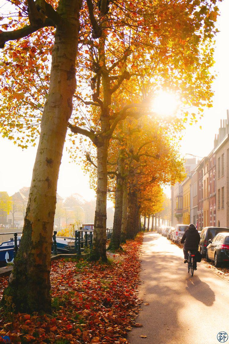 Le Chameau Bleu - Blog Week End à Gand - Gand en Automne