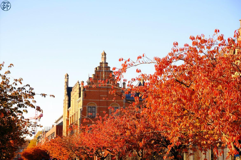 Le Chameau Bleu - Blog Week End à Gand - Toits de Gand