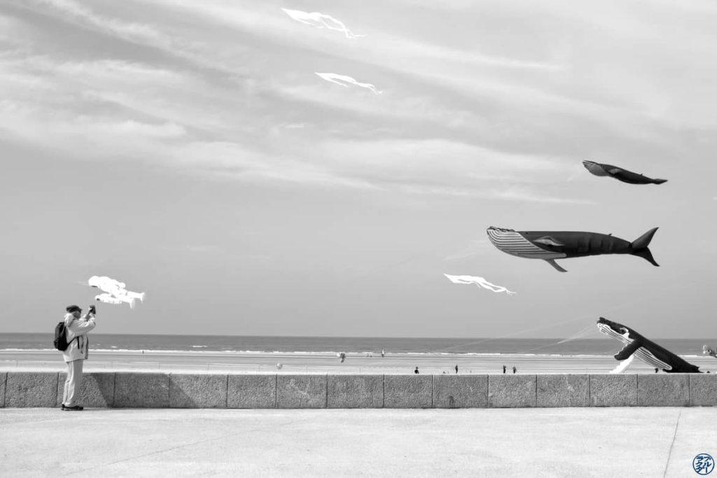 Le Chameau Bleu - Blog Voyage et Photo - La Baie de Somme à Vélo - Berck - Chasseur de Baleine