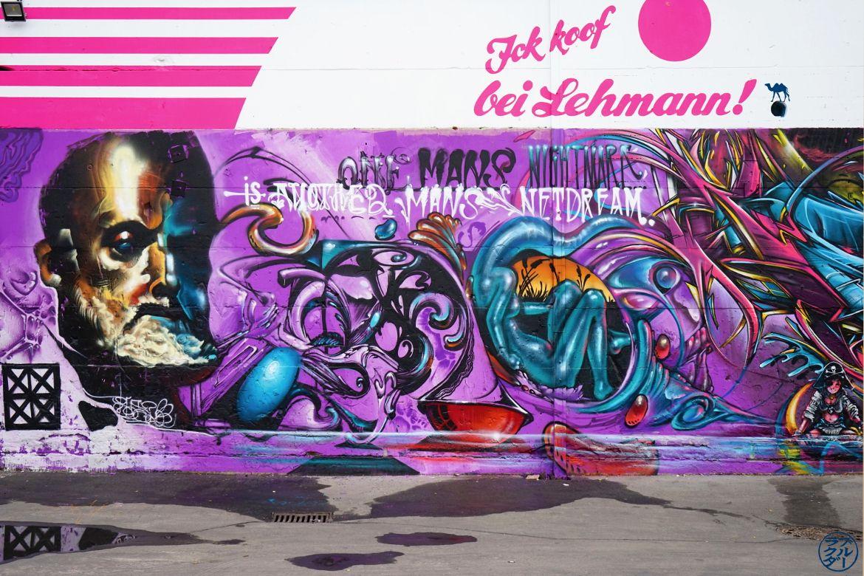 Le Chameau Bleu - Street art Berlinois - Art Berlin Allemagne