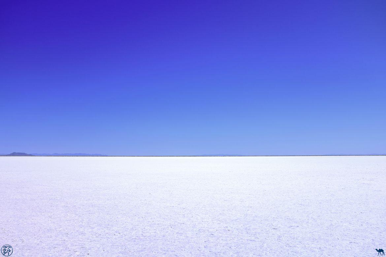 Le Chameau Bleu - Blog Voyage Utah - Dessert de sela Bonneville Salty Flats