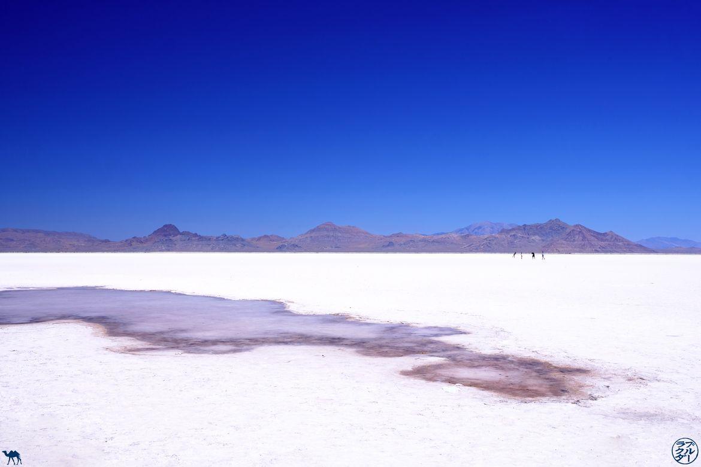 Le Chameau Bleu - Blog Voyage Utah - Bonneville Flats