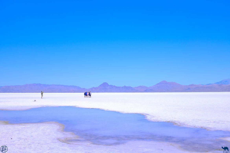 Le Chameau Bleu - Blog Voyage Bonneville Salt Flats - Photos de groupe