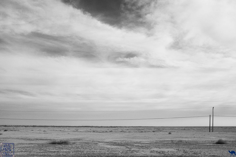 Le Chameau Bleu- Blog voyage - Californie du Sud-Desert de Mojaves