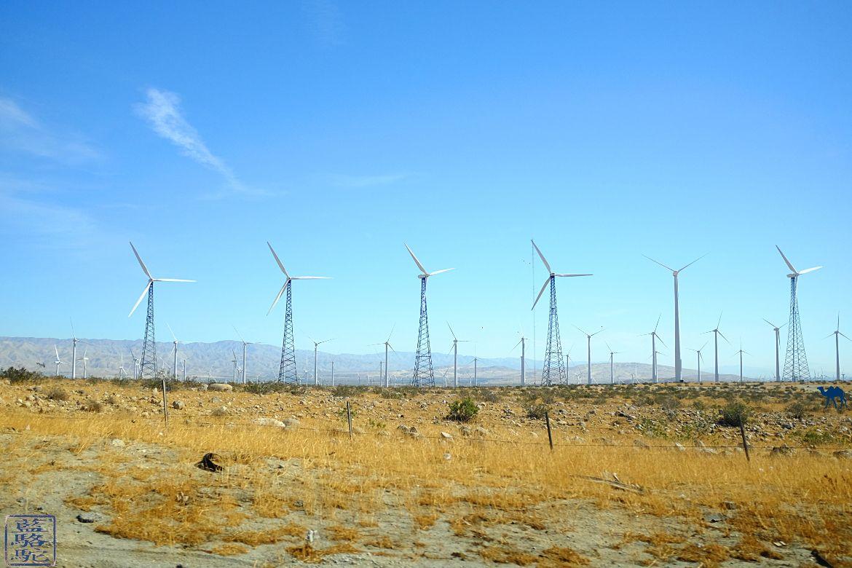 Le Chameau Bleu- Blog voyage - Californie du Sud-eoliennes du Desert de Mojaves