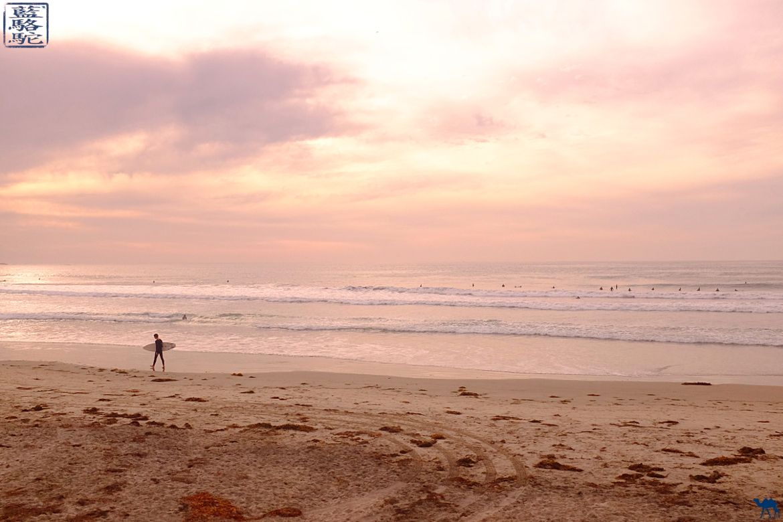 Le Chameau Bleu- Blog voyage - Californie du Sud-La Jolla San Diego