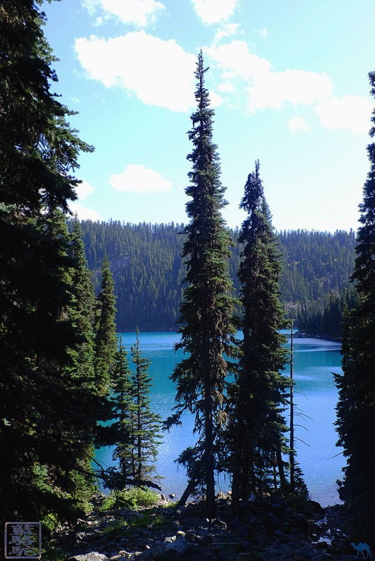 Le Chameau Bleu - Blog Voyage Canada Colombie Britannique - Barrier Lake Garibaldi Provincial Park - BC Parks - Canada