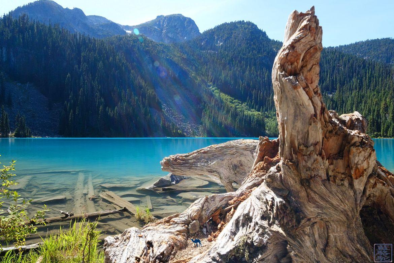 Le Chameau Bleu - Blog Voyage Colombie Britannique Canada - Paysage Joffre Lake - Colombie Britannique - Canada
