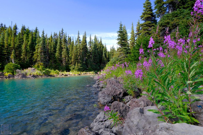 Le Chameau Bleu - Blog Voyage Canada Colombie Britannique - Garibaldi Provincial Park - Lac - Canada