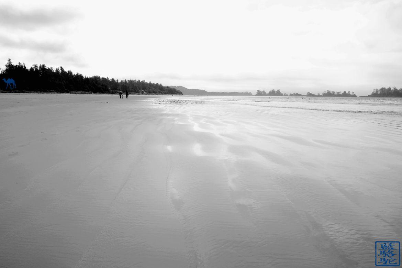 Le Chameau Bleu - Blog Voyage Tofino Canada - Plage Mackenzie Beau à Tofino Voyage Canada