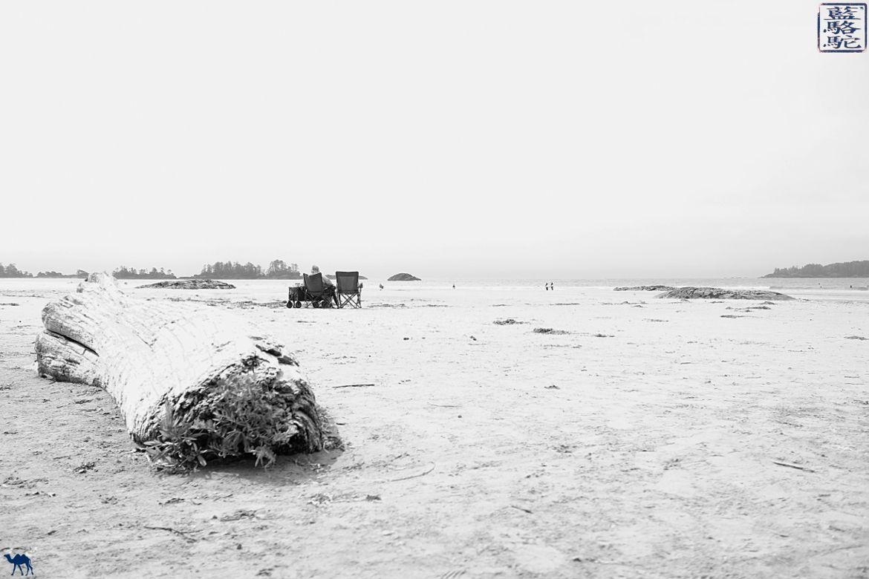 Le Chameau Bleu - Blog Voyage Tofino Canada -Long Beach Pacific Rim National Park Canada
