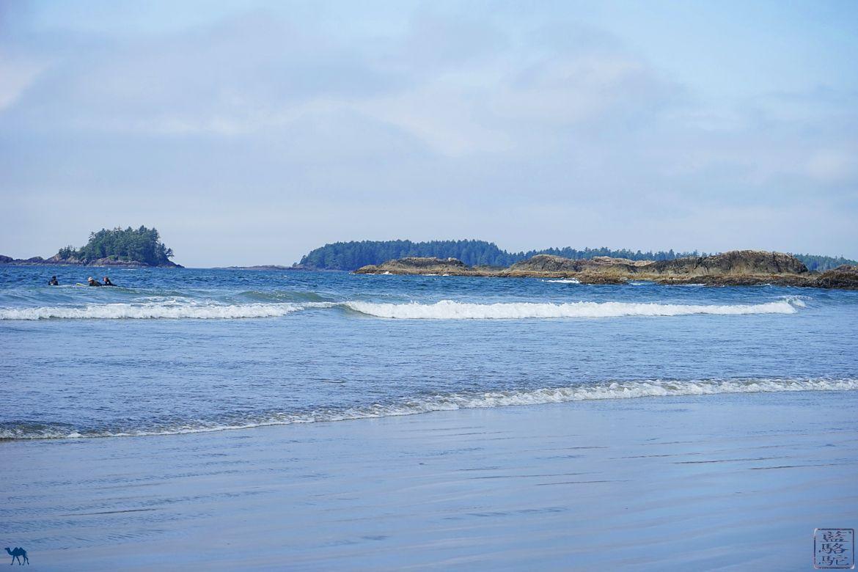 Le Chameau Bleu - Blog Voyage Tofino Canada - Plage de Tofino sur l'ile de victoria Canada