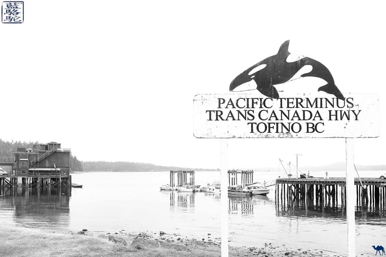 Le Chameau Bleu - Blog Voyage Tofino Canada - Pacific Terminus Transcanada Highway Tofino BC
