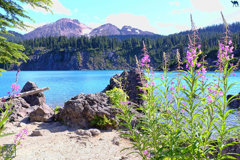Le Chameau Bleu - Blog Voyage Canada Colombie Britannique - Garibaldi Provincial Park - Colombie Britannique
