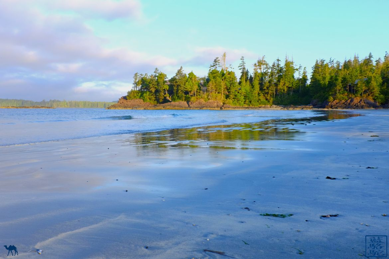 Le Chameau Bleu - Blog Voyage Tofino Canada - Mackenzie Beach - Tofino - British Columbia
