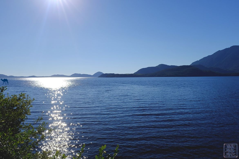 Le Chameau Bleu - Blog Voyage Tofino Canada - Paysage de Tofino sur l'ile de Vancouver - Colombie Britannique