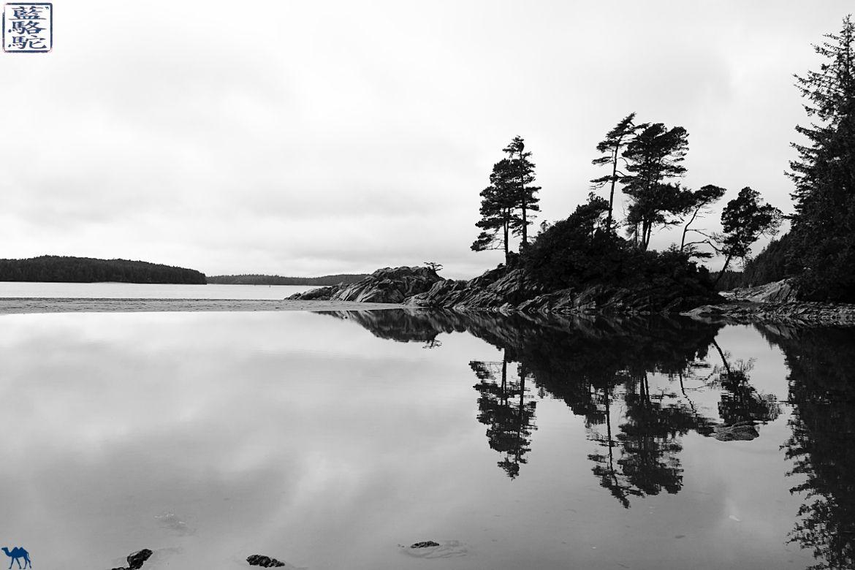 Le Chameau Bleu - Blog Voyage Tofino Canada - Plage de Tofino - Colombie Britannique - Ile de Vancouver Canada