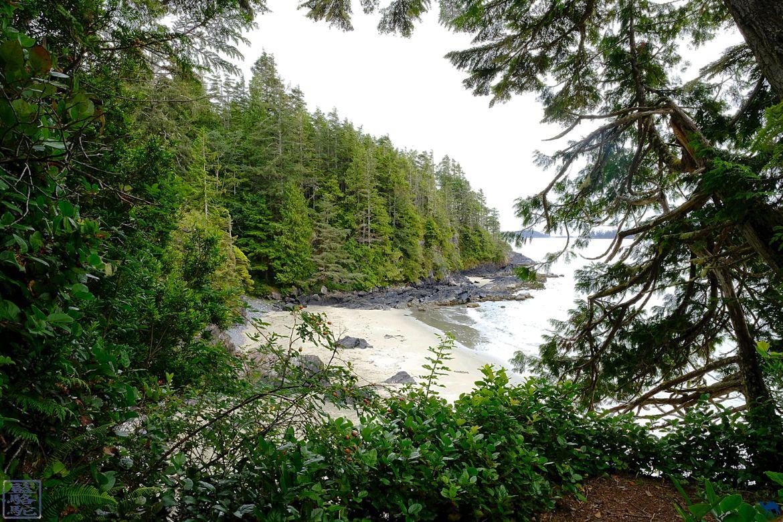 Le Chameau Bleu - Blog Voyage Tofino Ile de Vancouver - Balade sur les plages de Tofino