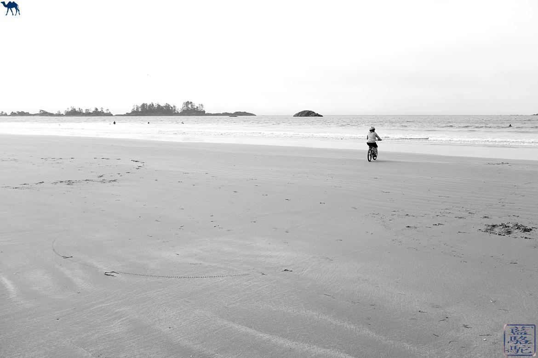 Le Chameau Bleu - Blog Voyage Tofino Canada - Vélo Plage de Tofino - Long Beach Ile de Vancouver Canada