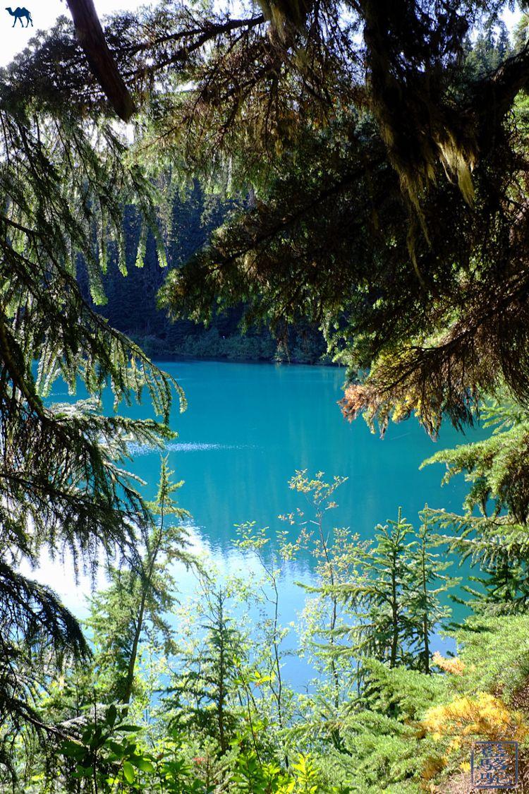 Le Chameau Bleu - Blog Voyage Canada Colombie Britannique - Vue sur Barrier Lake Canada - Colombie Britannique - Randonnée
