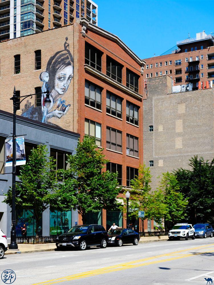 Le Chameau Bleu Blog Voyage Chicago - Rue et Street Art