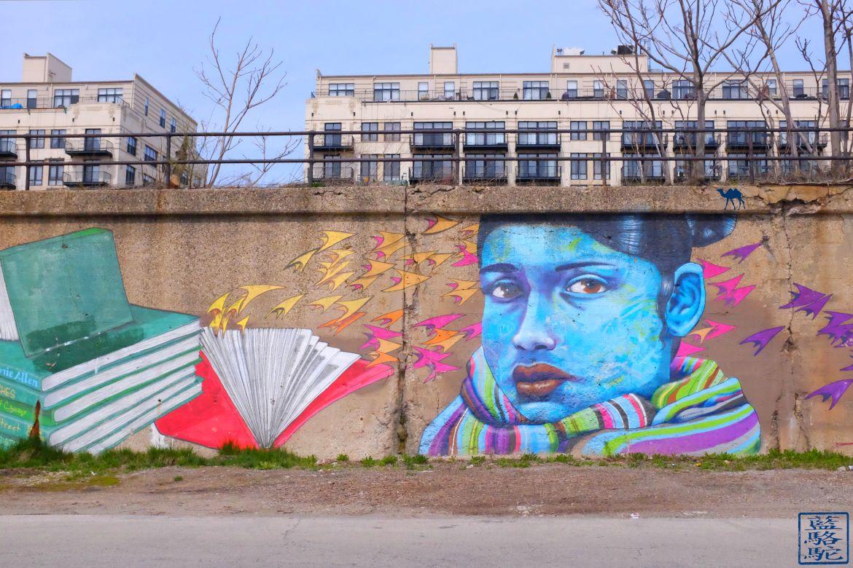 Le Chameau Bleu - Blog Voyage Chicago - 18th street Pilsen