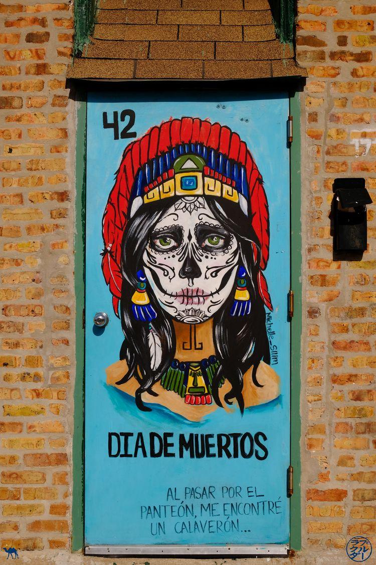 Le Chameau Bleu - Blog Voyage Chicago - Porte Street Art Pilsen