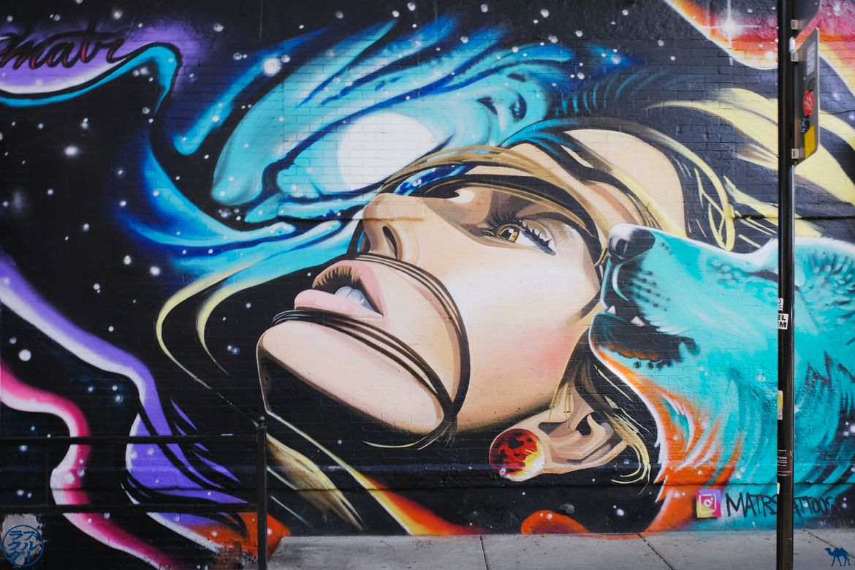 Le Chameau Bleu - Blog Voyage Chicago - Mur street Art Pilsen