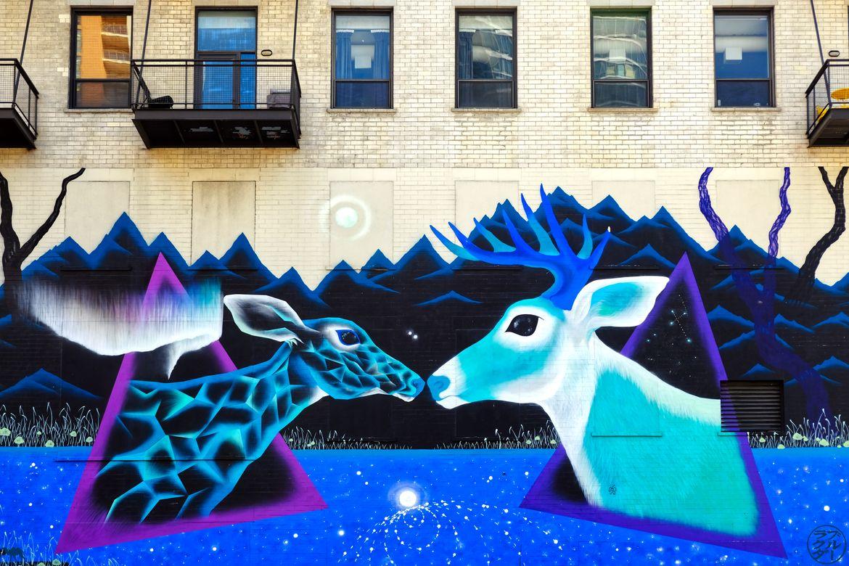 Le Chameau Bleu - Blog Voyage Chicago - Street Art Biches