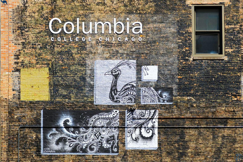 Le Chameau Bleu - Blog Voyage aux USA - Street Art Columbia College