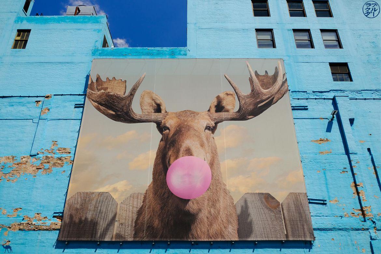 Le Chameau Bleu - Blog Voyage Chicago - Street Art Cerf