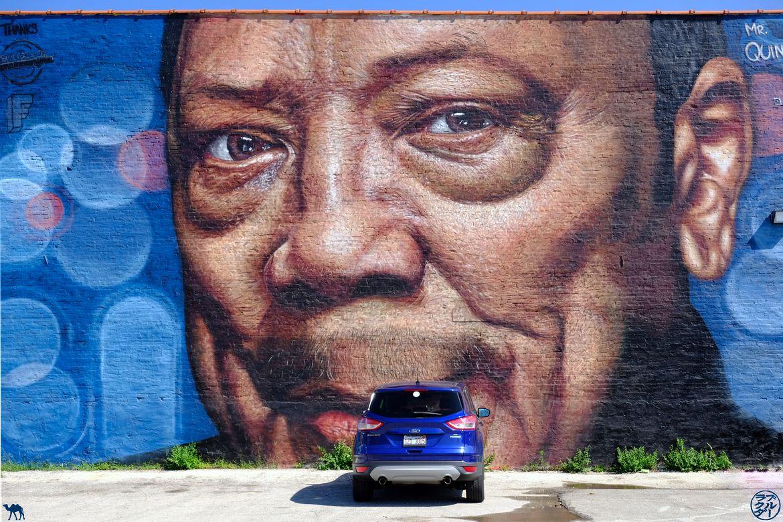 Le Chameau Bleu - Blog Voyage Chicago -Balade autour du Street Art - Quincy Jones