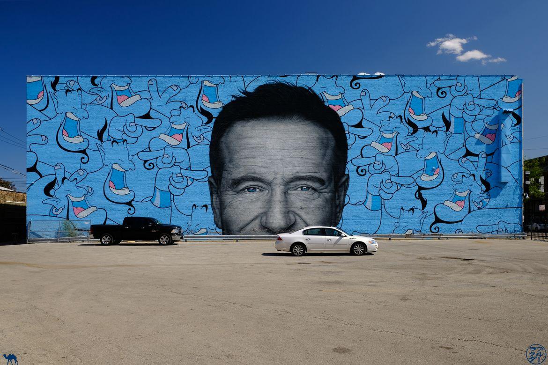 Le Chameau Bleu - Blog Voyage Chicago -Balade autour du Street Art - Robin Williams