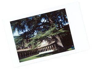 Le Chameau Bleu - Blog Voyage Canal des deux mers - Cloitre de Moissac Polaroid