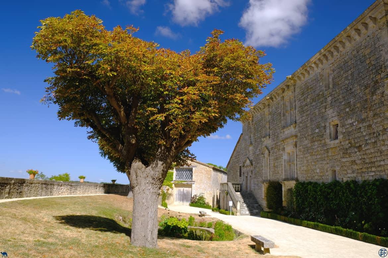 Le Chameau Bleu - Blog Voyage et Cuisine - Cour du château de Gramont - Tarn Et Garonne