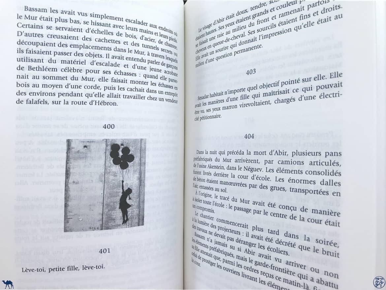 Le Chameau Bleu - Blog Voyage et Littérature - Apeirogon Extrait