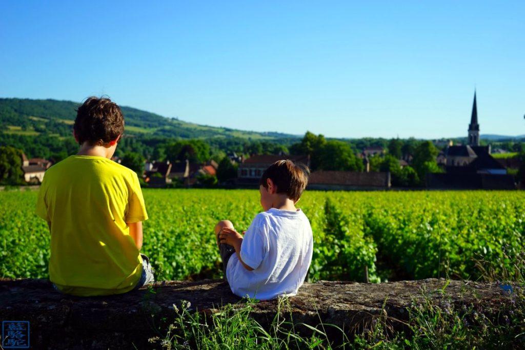 Le Chameau Bleu - Blog Voyage Bourgogne Santenay - Enfants dans les vignes
