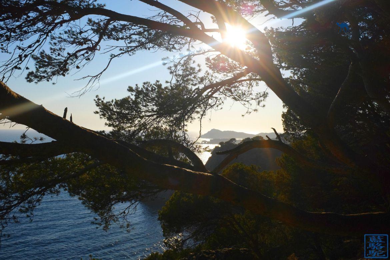 Le Chameau Bleu - Blog Voyage Sud Est France - Tourisme Var Six Fours les Plages